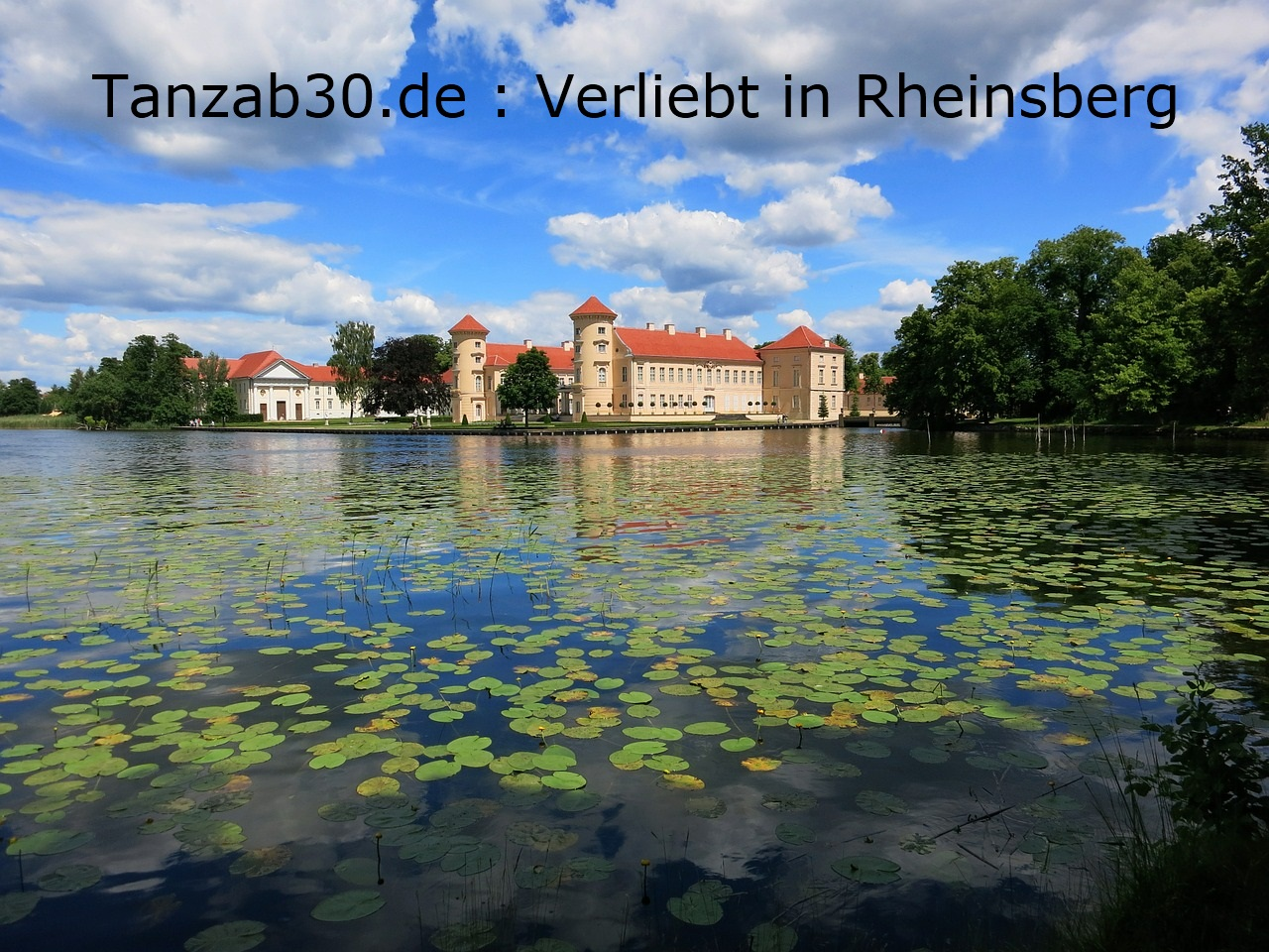 singles blankenburg harz Freiburg im Breisgau